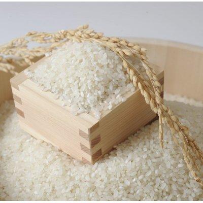 画像2: 新米 【1年度産】きぬむすめ 白米30kg